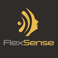 flexsense