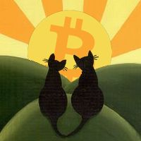2-cats-for-the-bitcoin-lightning-network
