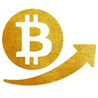 Proche du All-Time High en dollars atteint le 4 décembre 2013 (1240$ sur MtGox, 1175$ sur Bitfinex,1153$ sur Bitstamp et1165$ selon l'indice de Coindesk), le bitcoin vient de battre son record en euros (1087€ le 5 janvier 2017) avec une pointe