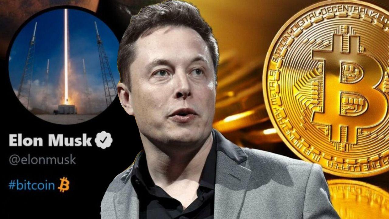 """Elon Musk : """"Bitcoin est vraiment sur le point d'être largement accepté par  la finance conventionnelle"""" - bitcoin.fr"""